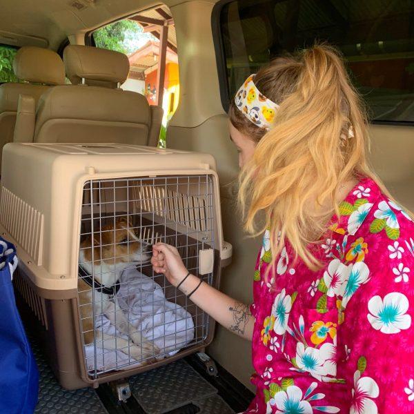 Carys the volunteer saying goodbye before adoption flight